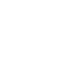 Women's fund of omaha logo